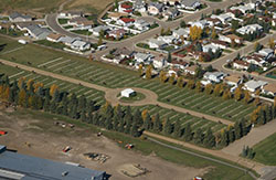 Aerial View of Memorial Cemetary