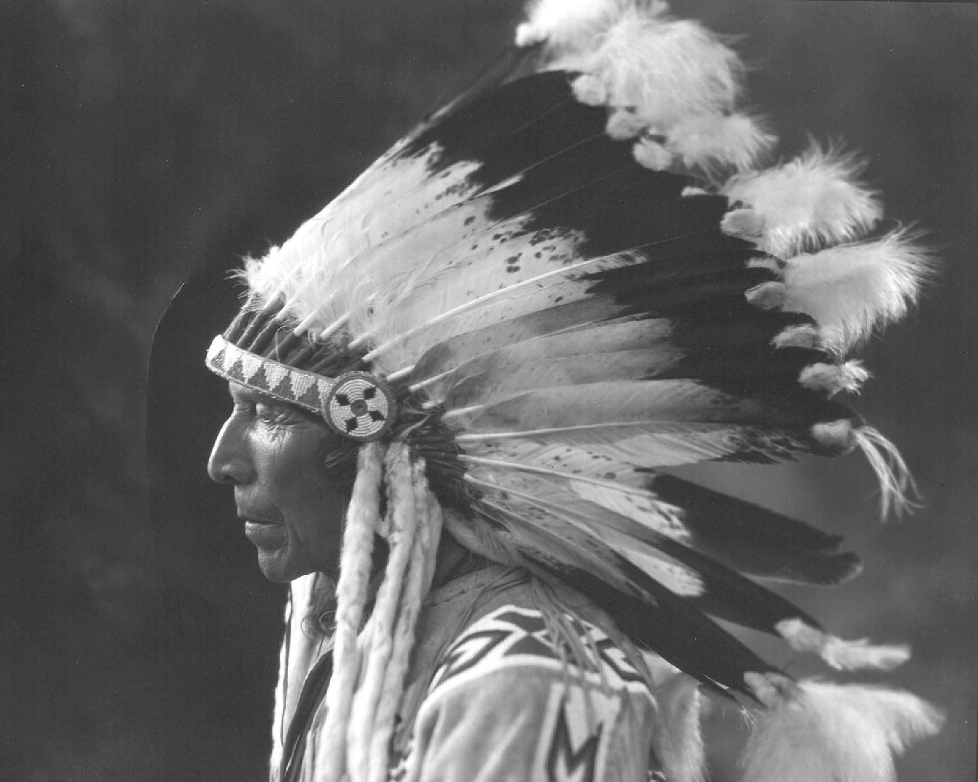 Native American chief with headdress