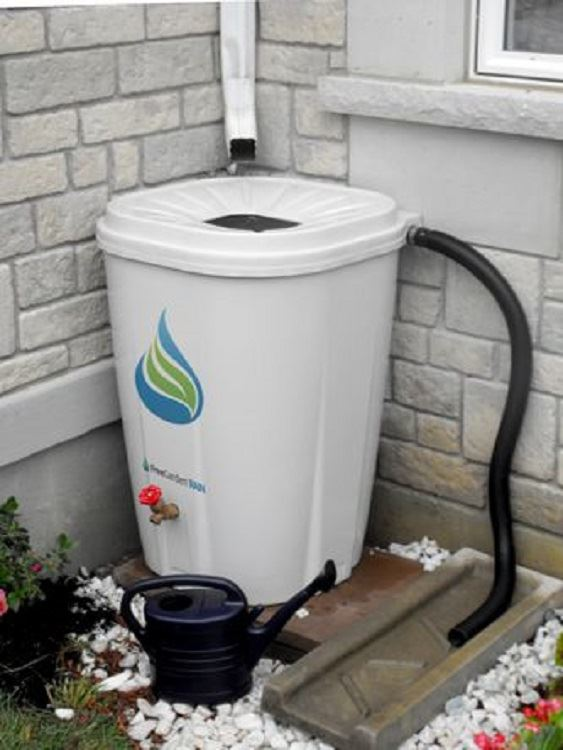 Rain barrel-newsflash